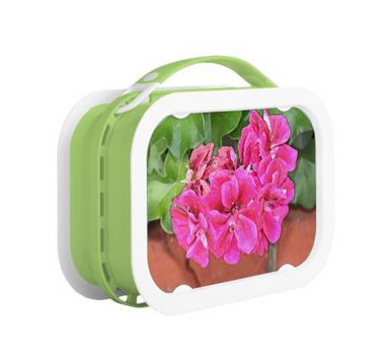 Geranium Bloom lunchbox